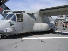 Osprey Tied Down